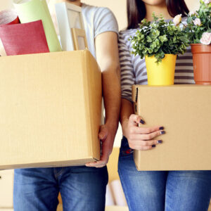 House Removals Stroud Green