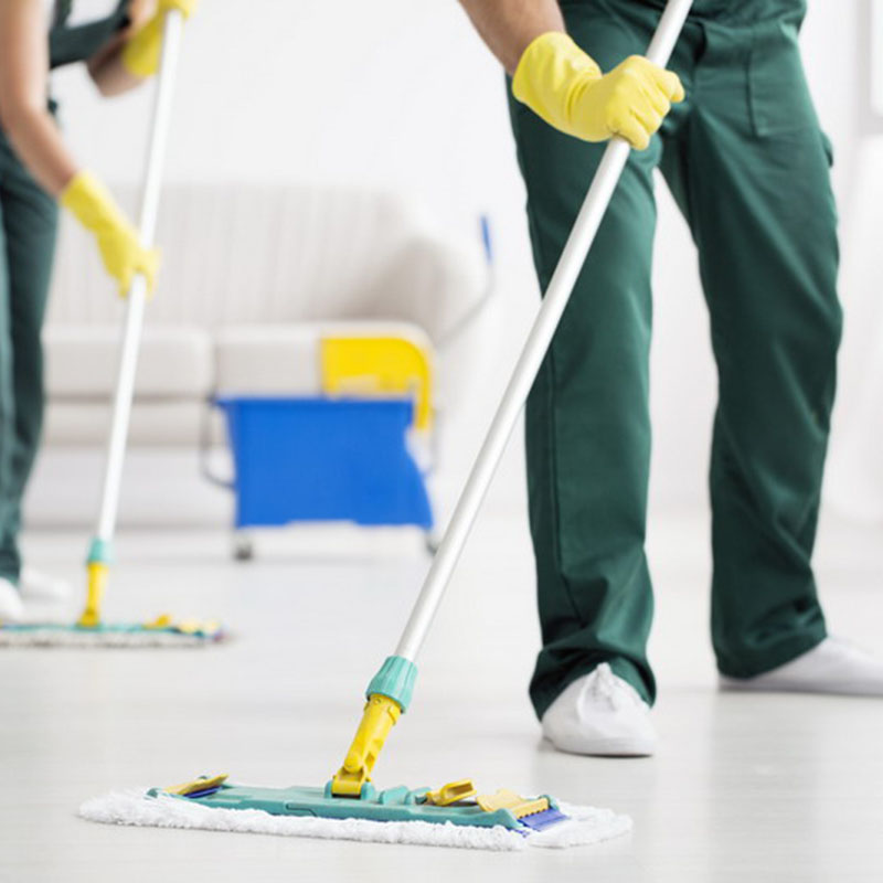 House Cleaning Seven Sisters