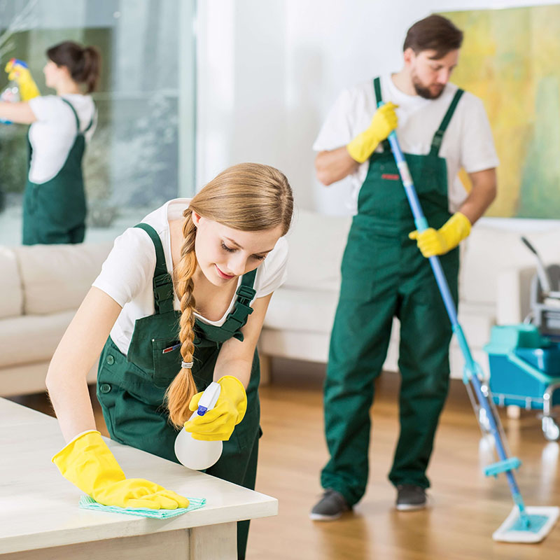House Cleaning Highgate