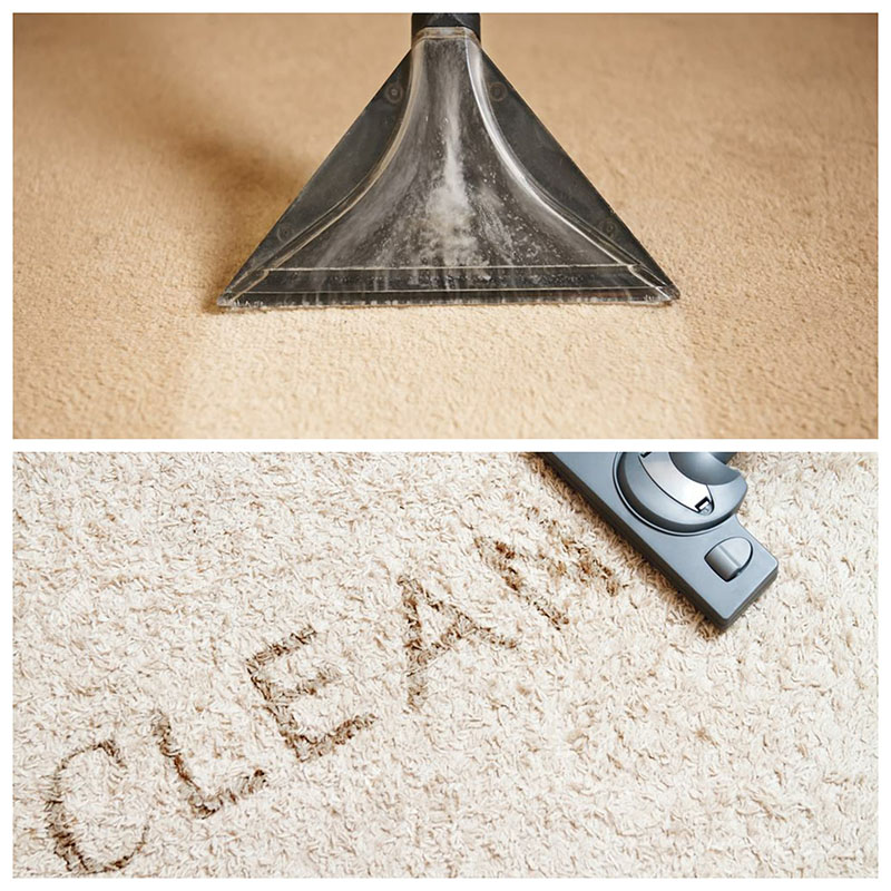 Best Carpet Cleaning Edmonton