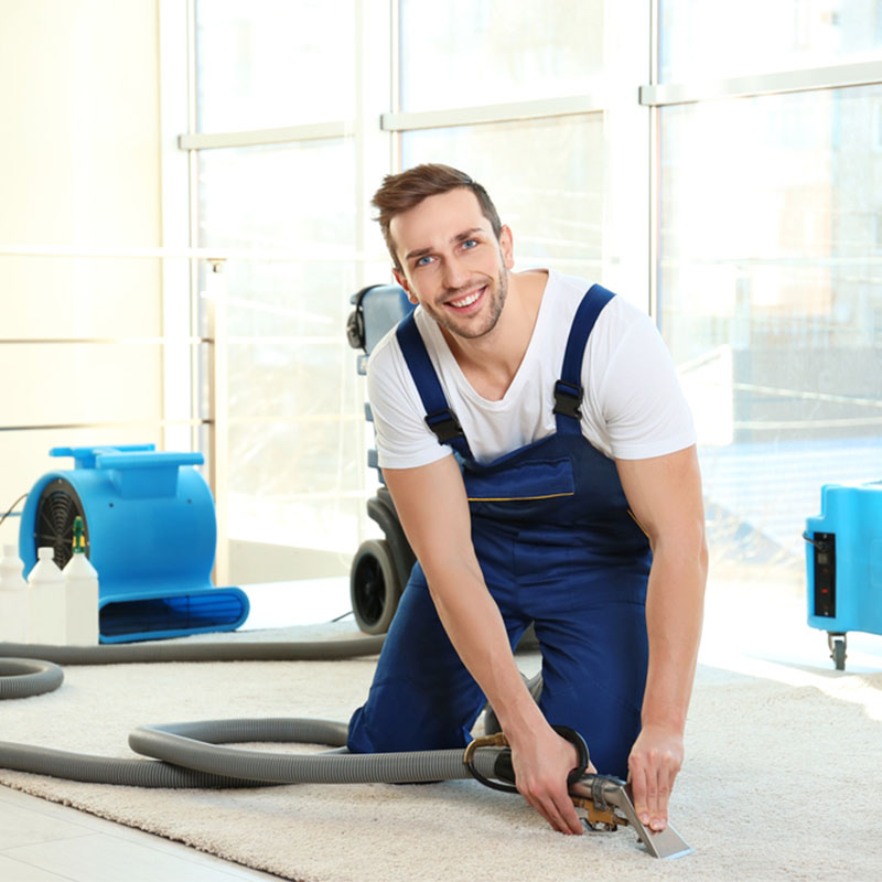 Best Carpet Cleaning Southgate