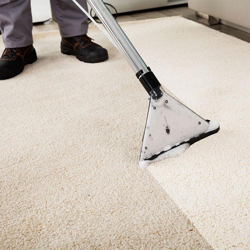 Carpet Cleaning Totteridge
