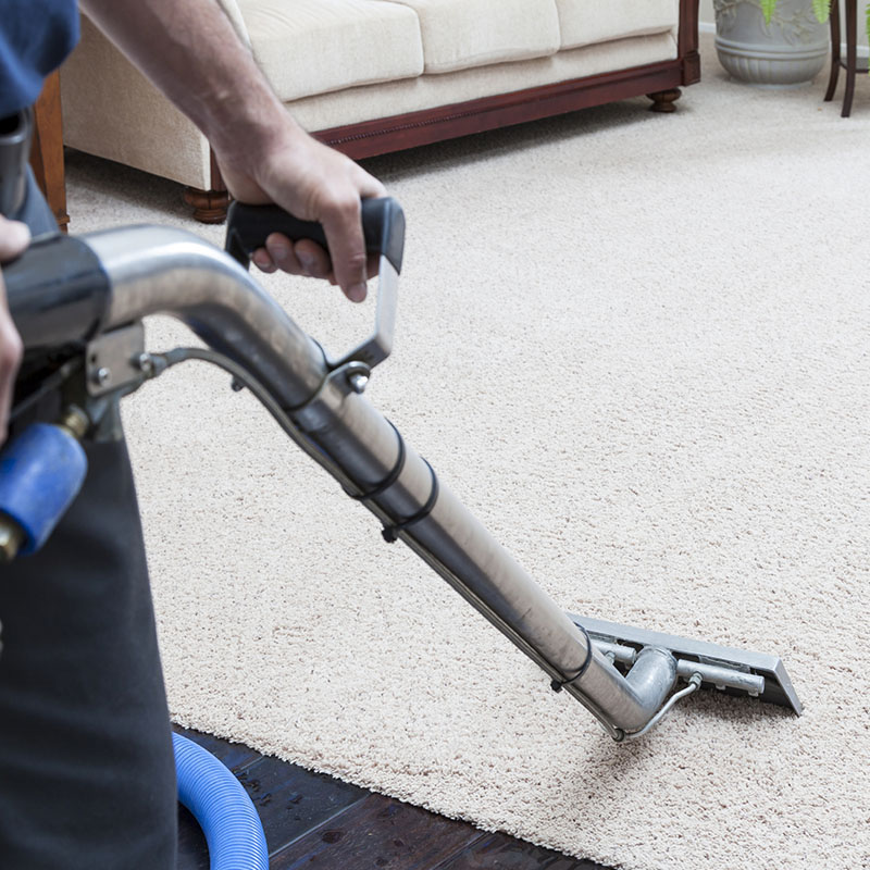 Carpet Cleaning Stroud Green
