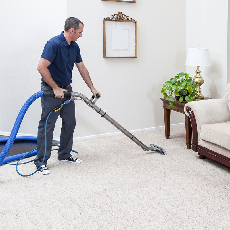 Carpet Cleaning Bounds Green