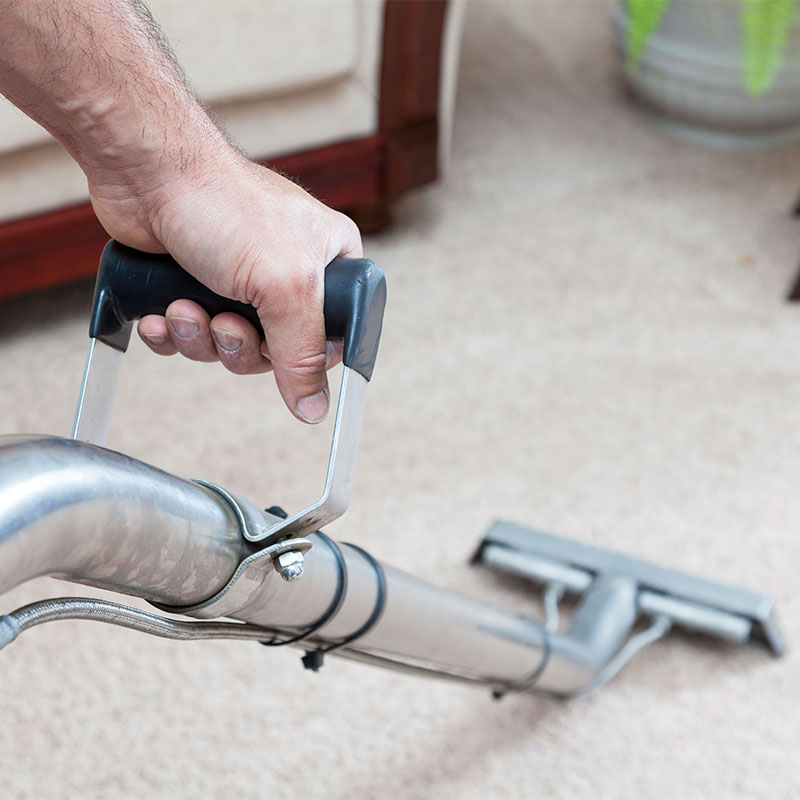 Carpet Cleaning New Southgate